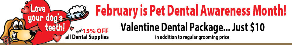 February is Pet Dental Awareness Month!